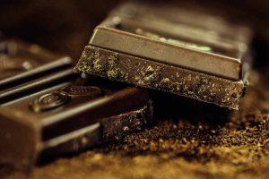 Le chocolat est toxique pour le chien