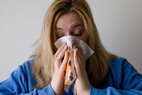 allergie au chien