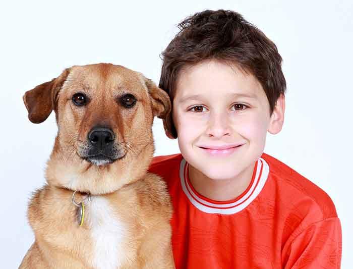 chien et enfant les règles
