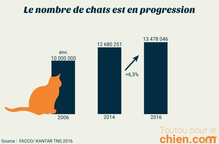 Evoluation du nombre de chats en France de 2006 à 2016