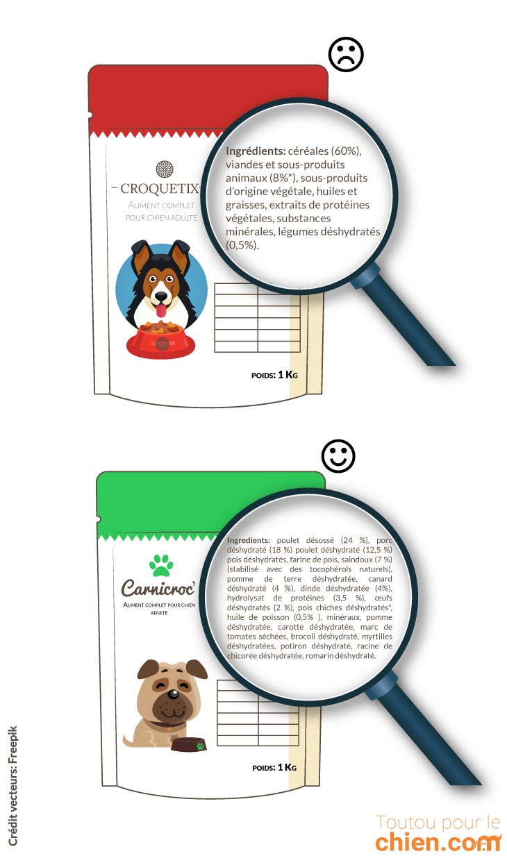 af1f72233648a3 Choisir les meilleures croquettes pour chien   le guide complet