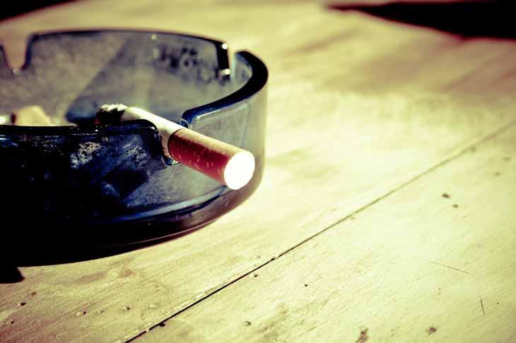 Les cigarettes sont toxiques pour le chien