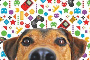 Les jeux vidéos éducatifs pour chien