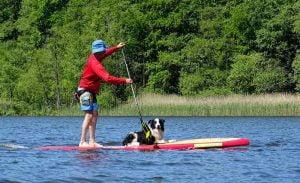 Pratiquer le cani-paddle
