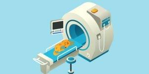 Le scanner vétérinaire pour chien