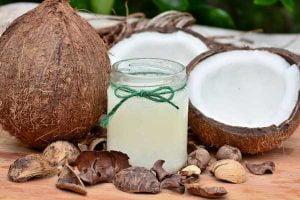 L'huile de coco pour chien